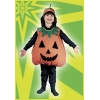 Pumpkin Toddler Plump
